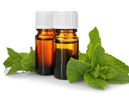 The Benefits of Peppermint Oil