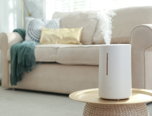 4 Great Reasons Why You Should Try a Humidifier
